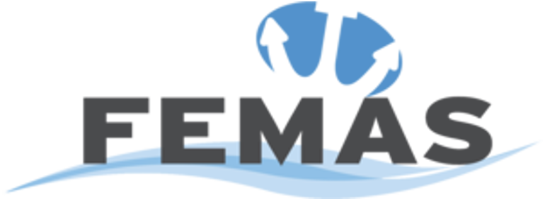 Federation of European Maritime Associations of Surveyors and Consultants